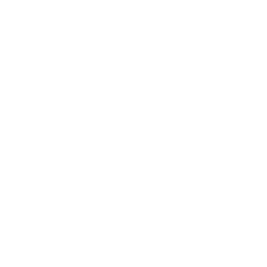 BeeDigital Web Development
